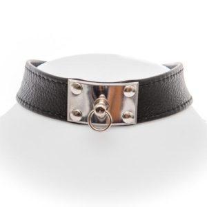 Halsbänder mit Beschlag